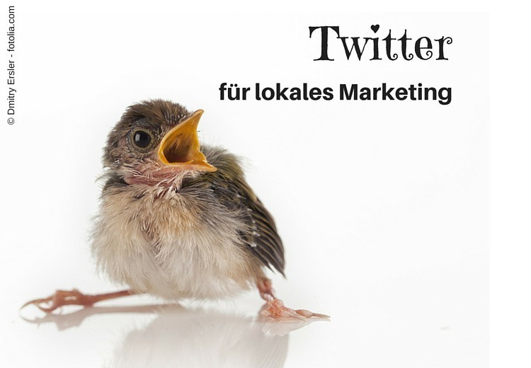 Junger Spatz - Illustration zu Twitter für lokales Marketing