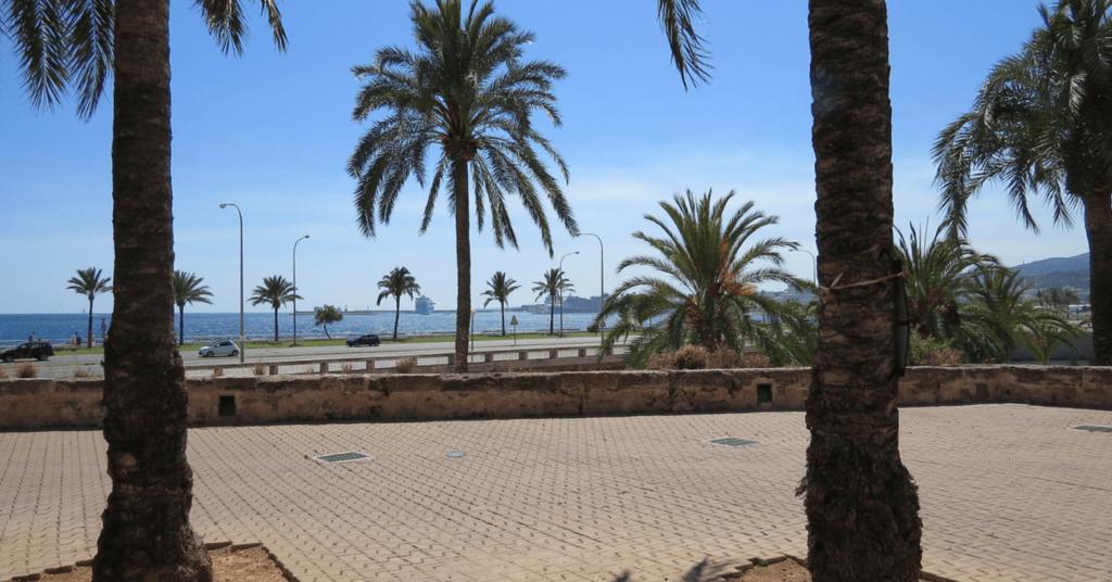 Ansicht Palma de Mallorca - Wie Du Dir Deine Facebook Sichtbarkeit auch während Deines Urlaubs bewahrst