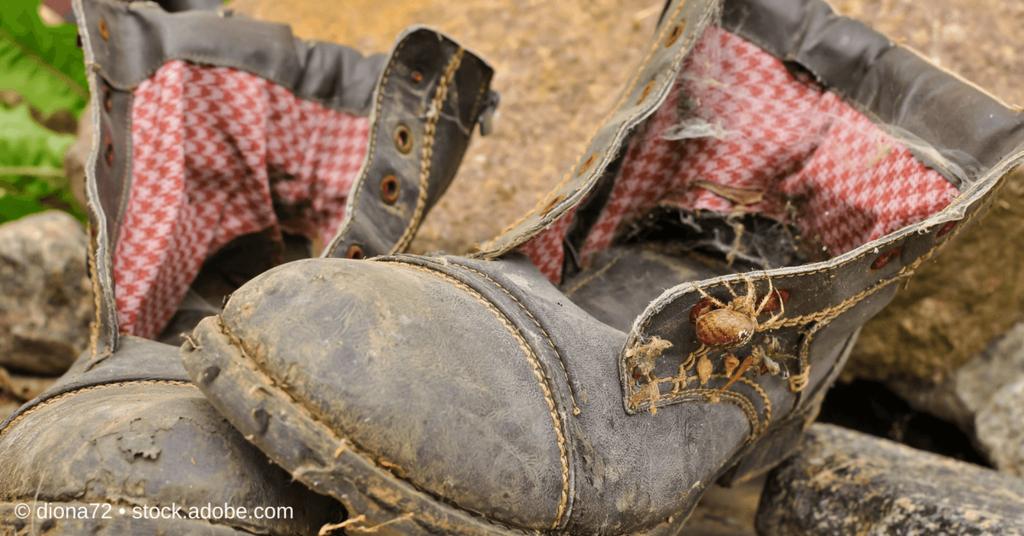 Alte Schuhe - Favicon