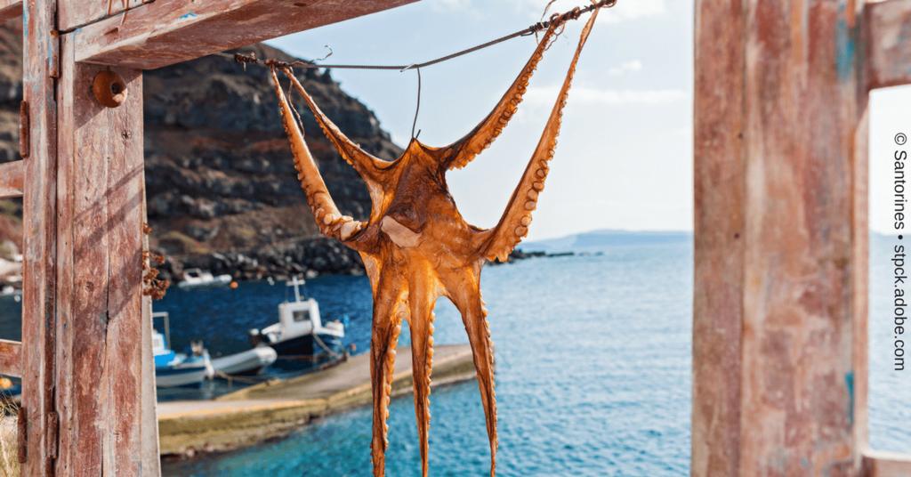 Recurpost - Angriff auf den Kraken Edgar
