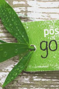 Post Planner, ein Social Media Tool